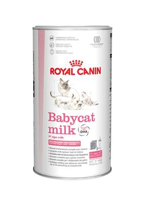 Royal Canin Dry Cat Food Babycat Milk / 300g