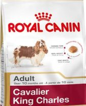 Royal Canin Dry Dog Food Breed Nutrition Cavalier King Charles Adult 1.5kg