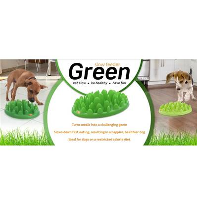 Green Interactive Slow Feeder