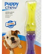 Nylabone Puppy Chew Stix - Bacon, Regular Size