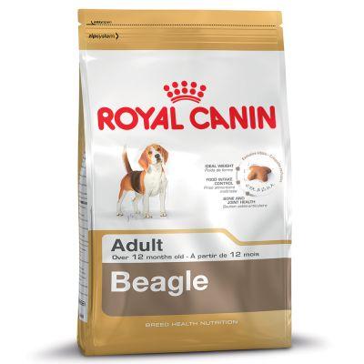 Royal Canin Adult Beagle 12kg