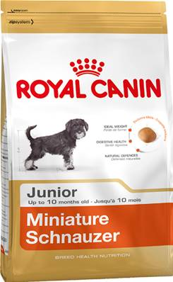 Royal Canin Dry Dog Food Breed Nutrition Miniature Schnauzer Junior 1.5kg