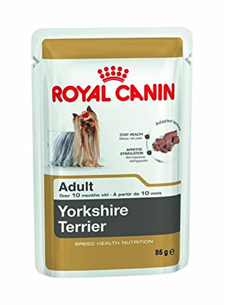 royal canin wet dog food adult yorkshire terrier adult 85g pet shop 365. Black Bedroom Furniture Sets. Home Design Ideas