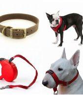Dog Walking Accessories